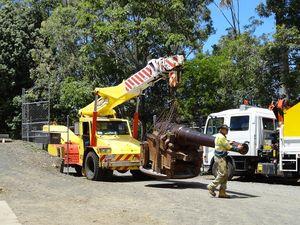 Colonial guns to be placed near Alexandra Park Zoo entrance