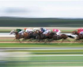 Horse racing is a big employer in Queensland.