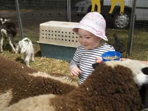 Community comes to Glennie Fair for fun and frivolity