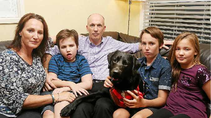 STRUGGLING TO STAY: Noosaville GP Stephen Grandison with wife Sarah, Tom, Zues the dog, Ben and Katie. He says the Department of Immigration's permanent visa assessment process is flawed.