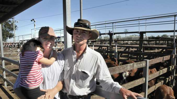 At the Elders Saleyards in Toowoomba on Monday are, from left, Cassie and Natasha Brown, and Kegan Deroo.