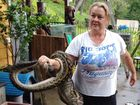 Another one? Python swallows Whitsunday family's pet dog