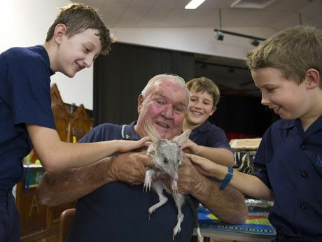 Co-founder of Save The Bilby Fund Frank Manthey introduces Jodie the bilby to students (from left) James Iliffe, Harry Ross and Vin Brooke-Wager during a visit to Martin Luther Primary Campus of Concordia Lutheran College, Monday, March 17, 2014. Photo Kevin Farmer / The Chronicle