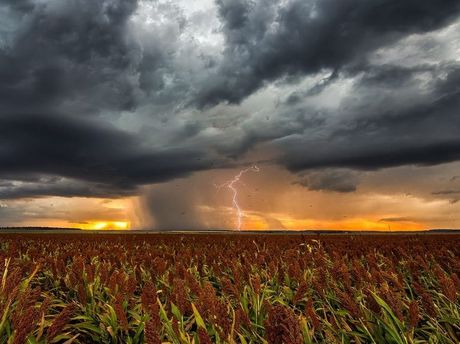 Heavy rain is forecast for most of south-west Queensland this week.