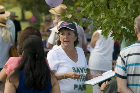 Jennette Logan circulates a petition against a detention basin at Ballin Park.
