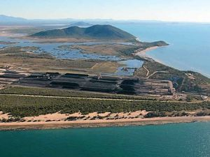 Bank says Abbot Point Coal Terminal 'not their business'