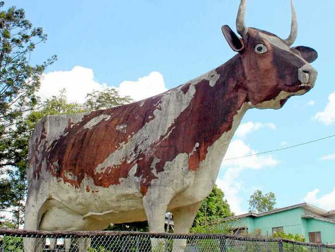 FOR SALE: The Big Cow complex at Kulangoor, north of Nambour, will go to auction on April 9.