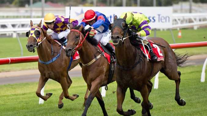 Toowoomba gelding Kempelly (outside) will be nominated for next month's Weetwood Handicap along with stablemates Typhoon Red and Tough Taimz.