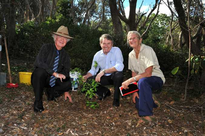 Ballina mayor David Wright, Member for Ballina Don Page and Rhonda James from Bushland Restoration Services plant one of the highly endangered species, the coastal fontainea.