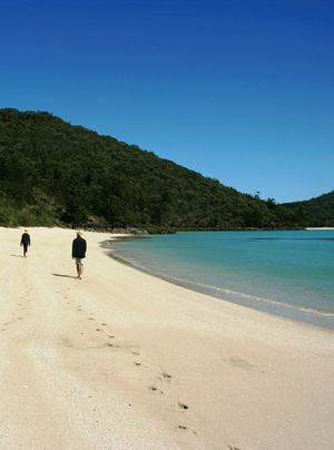 Minne Hall Bay in the Whitsundays. Photo David Colfelt