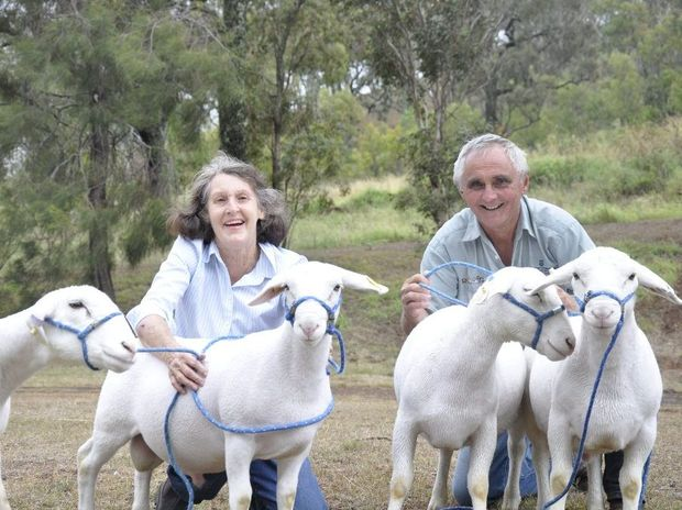 Mary and Peter Lynch of Spring Hill Dorper Stud at the Heritage Bank Toowoomba Royal Show.