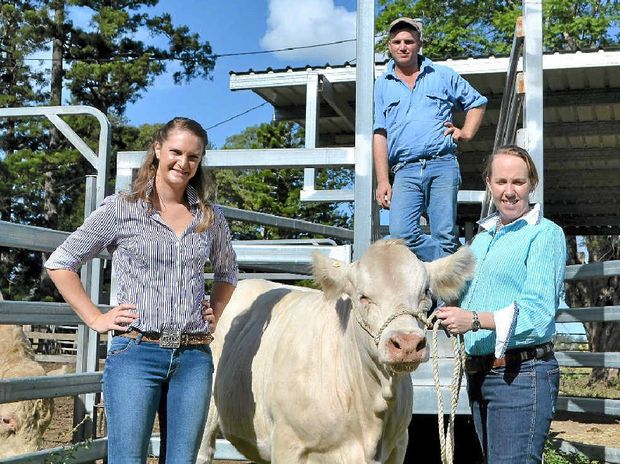 YOUNG GUNS: Poppy the heifer with Generation Ag committee members Samantha Chilton and James and Jane Dockrill.