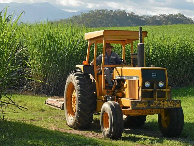 CUT ABOVE THE REST: Kim Evetts works in Mackay as a financial planner, and runs his cane farm at Gargett in his time off.