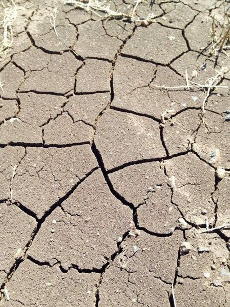 Ian Wickham got this photo of dry cracked soil just two days after more than five inches of rain fell at Charlton.