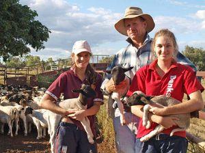 Lamb from Longreach paddock to Central Queensland doors