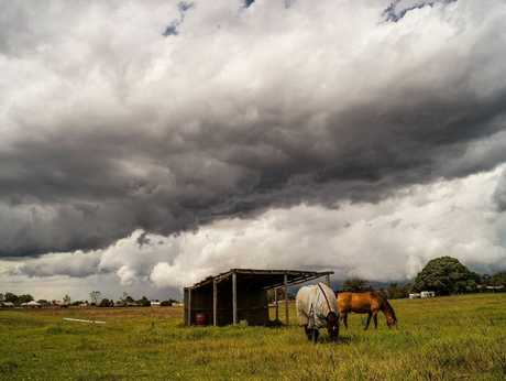Toowoomba could be in for a wet weekend with forecasters expecting showers and storms.