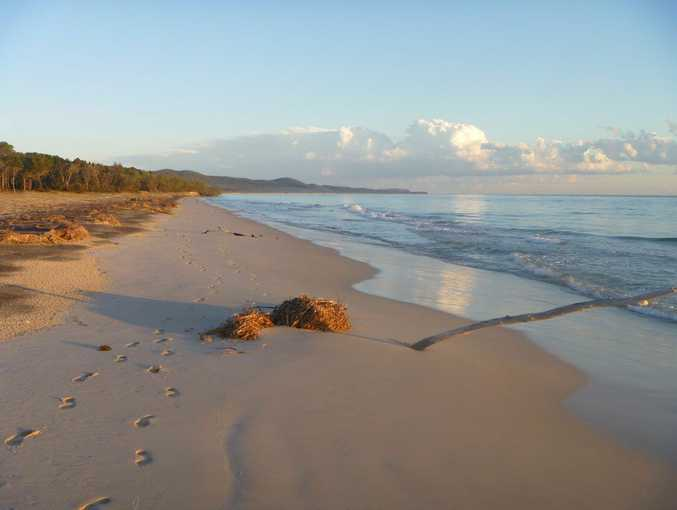 Camping trip to Moreton Island. Photo: Contributed