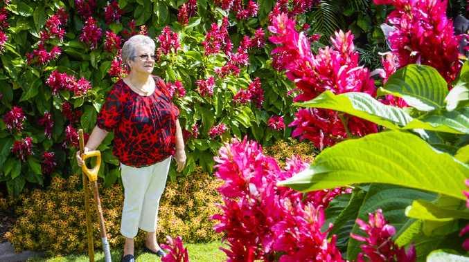TRANSFORMATION: Annette Baker in her garden at Junction Hill – getting ready for garden displays. Photo Adam Hourigan