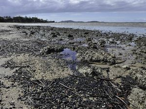 Gladstone's shame: Local beach named as state's dirtiest
