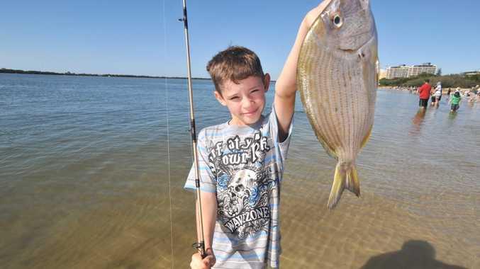 Noosa beach fishing