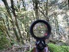 Landowner faces court over 'deer-hunt rage'