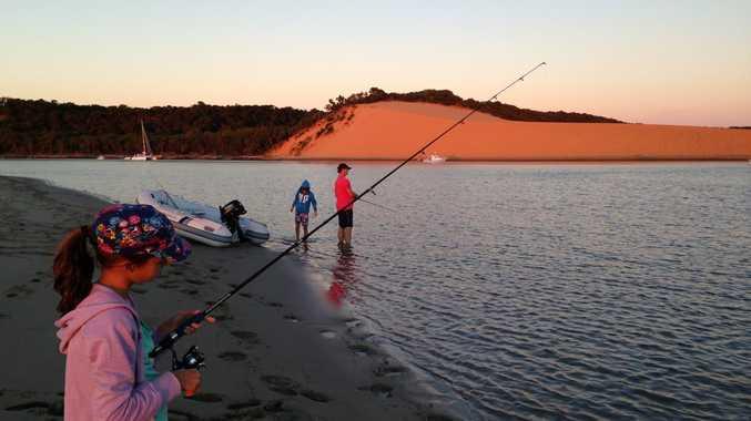 Top beach fishing spots near rockhampton sunshine coast for Pure fishing jobs