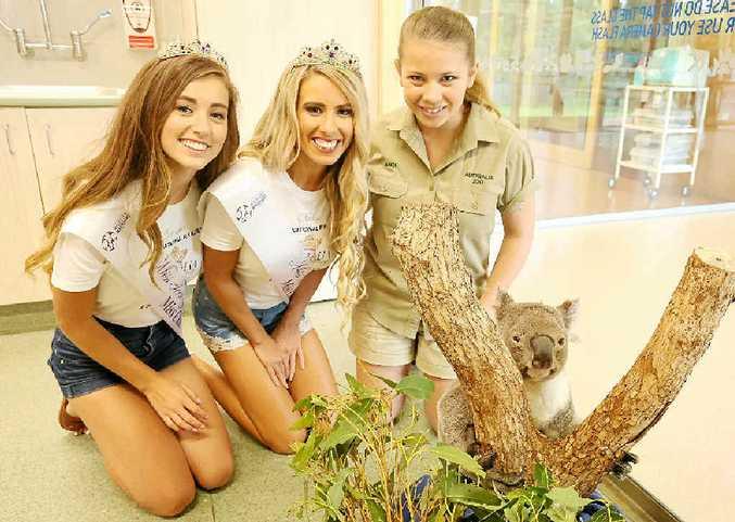 PERSONAL TOUR: Bindi Irwin shows Australia Galaxy Pageant winners Jasmine Glenister (left) and Kellie Germain an injured koala at Australia Zoo Wildlife Hospital.
