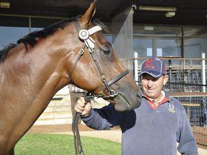 Stable's winning burst earns Sears top trainer honours