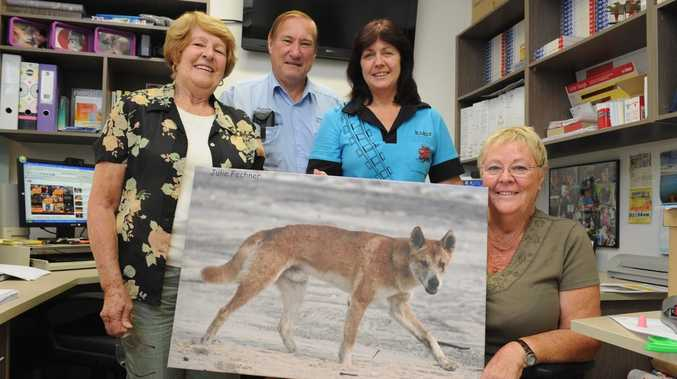 Save Fraser Island Dingoes members Norma Hannant, Malcolm and Karin Kilpatrick and Cheryl Bryant.