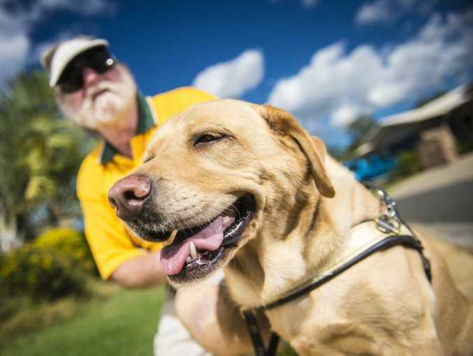 Dave Byars and his guide dog Queeny are wary of other dog owners' complacency in keeping their pets under control.