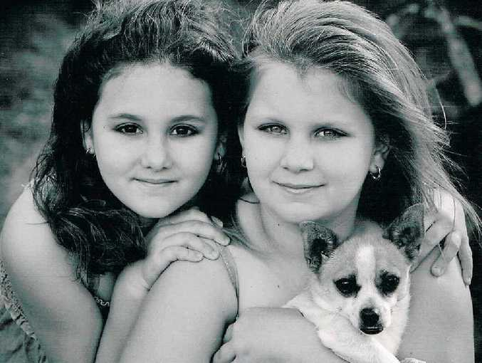 The Hamilton family's four-year-old pomeranian cross Jack Russell Camino was found bleeding from his stomach.