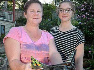 Victims warn of ATM skimming fraud on Sunshine Coast