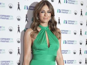 Elizabeth Hurley's mansion infested with mice