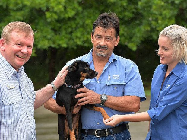 Councillor Frank Gilbert (left) with Rob Hill and Makarla Keating with one of the lost dogs that is in need of a new home.