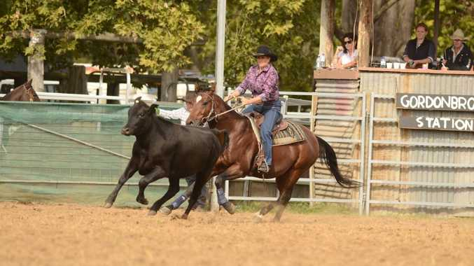 Rachael Paul was competing in the Baryulgil Campdraft on Gordon Brook Station at Fineflower on Saturday. Photo Debrah Novak / The Daily Examiner