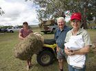 VIDEO: Bigger isn't always better, just ask Felton farmers