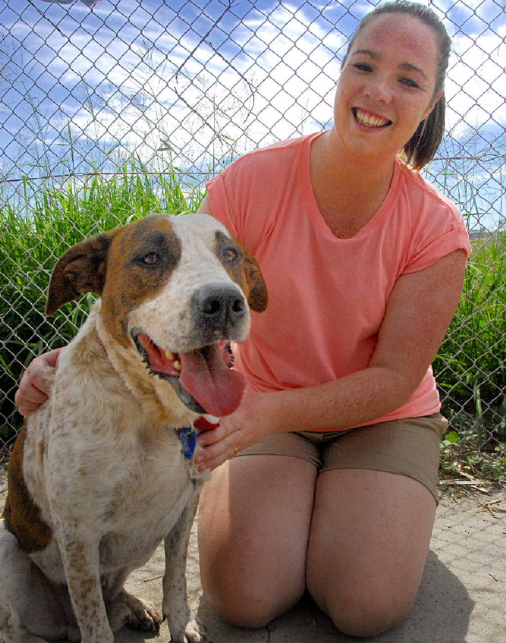 Friends of the RSPCA volunteer Kathryn O'Brien with Billie the boxer cross, who is still looking for a new home after Sunday's dog adoption day.
