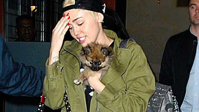 Miley Cyrus insists she's feeling better following her stay in hospital earlier this month for a severe allergic reaction to an antibiotic.
