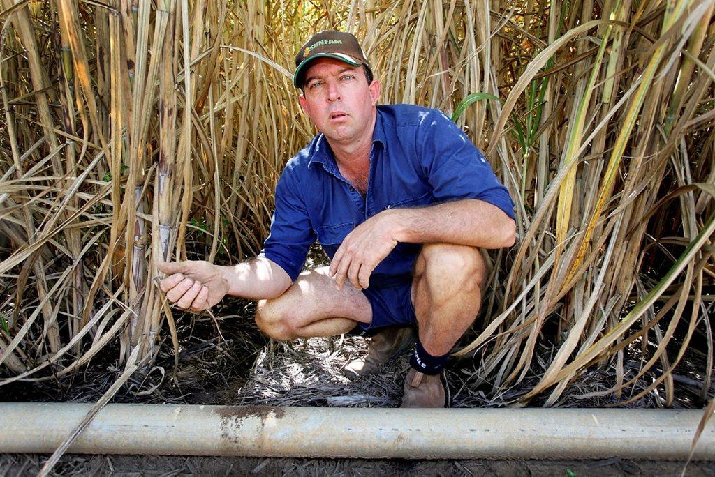 Bundaberg cane farmer Dean Cayley with his dry crop.