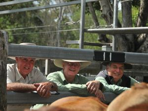 John Bell, Michael Lynch and Roy Taylor were the organisers behind Miriam Vale's silver anniversary cattle sale and show.
