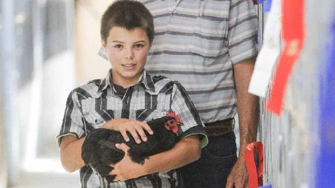 FAMILY PASSION: Eli Clarke, 9, shows off his winning Australorp in the poultry pavilion at the Maclean Show.