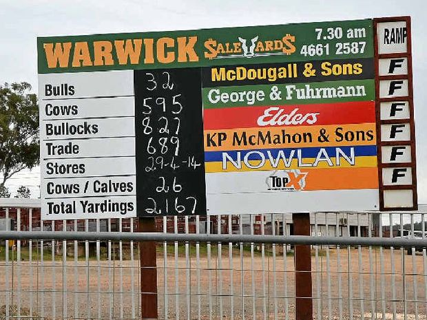YARDINGS BOOM: In a week that saw huge yardings nationally, Warwick's cattle sale was no exception as 2167 head passed through the gates last Tuesday.