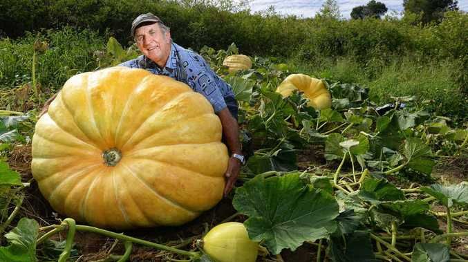 MIGHTY MELON: Geoff Frohloff with his huge pumpkin.