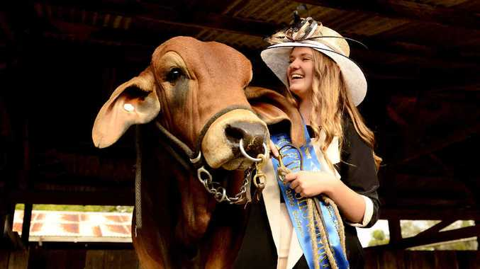 WINNERS: 2014 Grafton Showgirl The Daily Examiner photo-journalist JoJo Newby alongside another supreme champion Bos Indicus male 'Bizzy Beau'. Photo: Debrah Novak