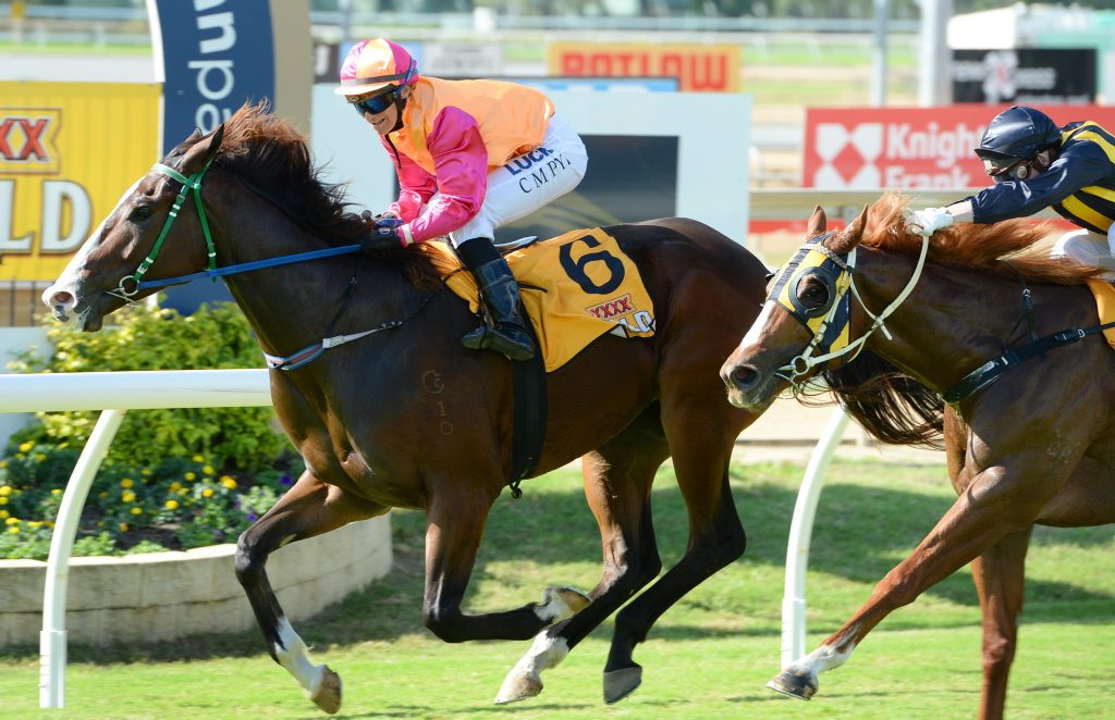Carley-Mae Pye riding Touch n Go to a win in the Bacardi Oakheart handicap over 1100M at Callaghan Park. Photo: Chris Ison / The Morning Bulletin