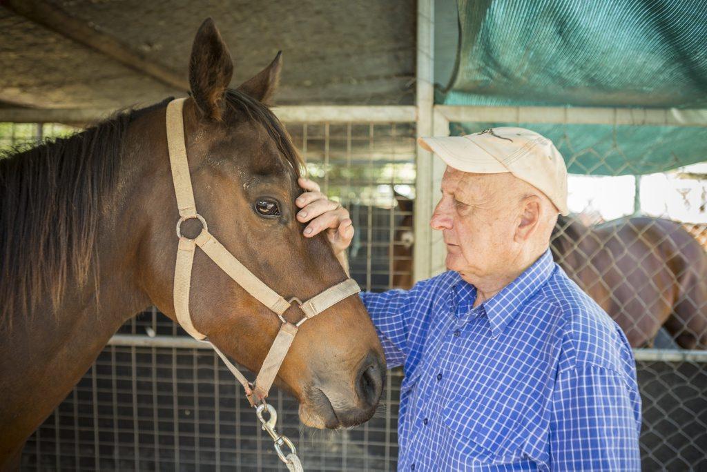 Trainer Hunter Kilner with horse Punjab Rocket. Photo Adam Hourigan / The Daily Examiner