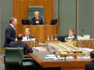 Did C-Pyne drop the C-bomb in Parliament?