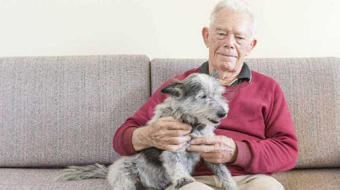 REUNITED:Teddy Newberry with his companion dog Robbie back together after a woman took the dog. Photo Adam Hourigan