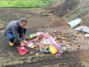 Man fined over illegal dumping