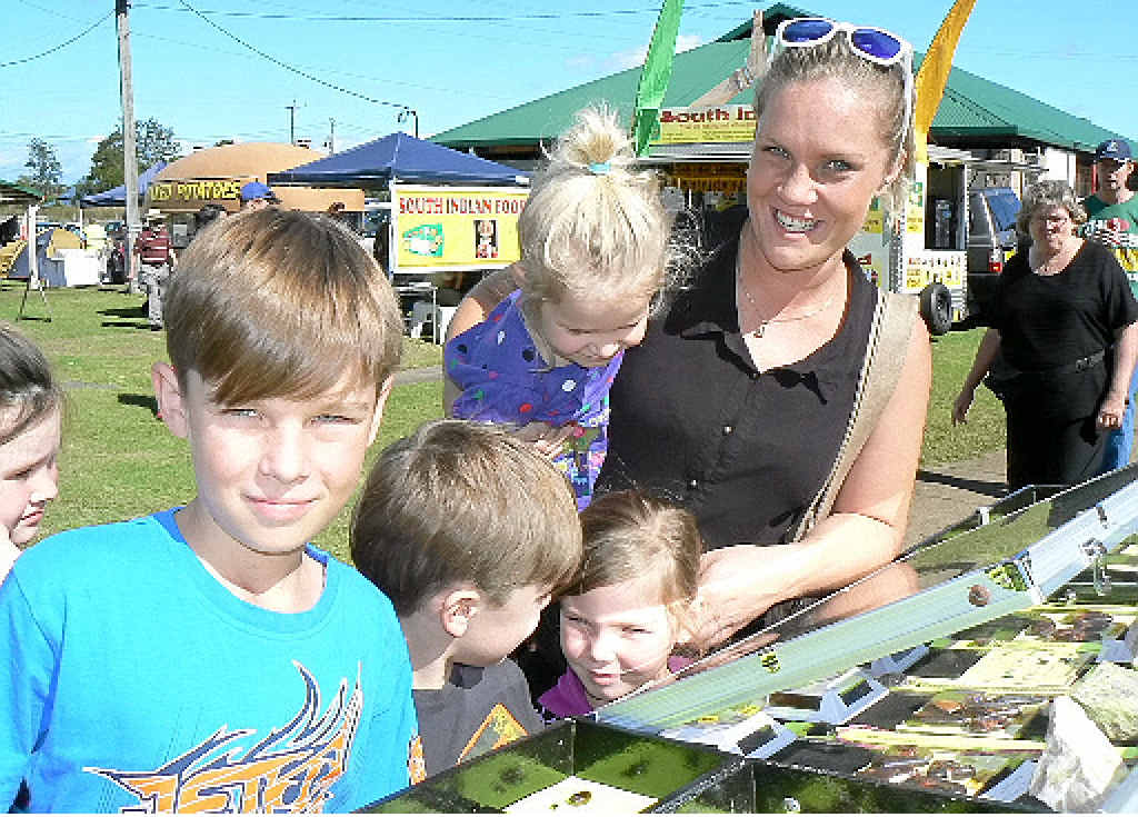 GEM OF A SHOW: The Lavis family of Lismore was enthralled by the stones on display at Gemfest. From left: Kydan, Dakoda, Taleya, Shayla and Sarah Lavis.